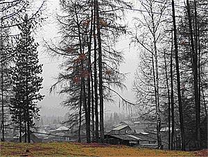 В дыму не только горы и п.Салдам, в дыму и весь Тоора-Хем. (14.10.2007)